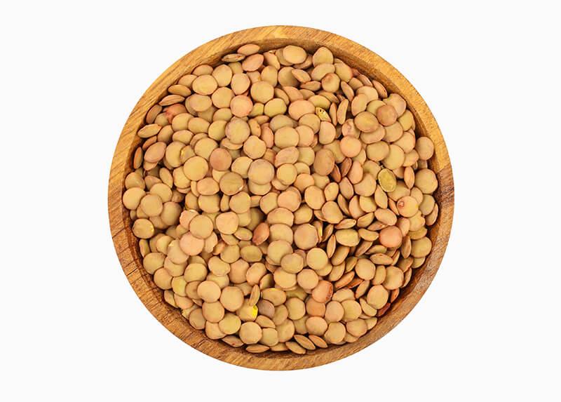 Lentil beans